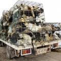 Hàng trăm con chó bị bắt trộm sẽ bị bán lại cho các xưởng sản xuất sản phẩm từ da