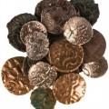 Một số đồng xu được phát hiện trong quá trình khai quật