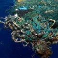 Rác thải làm từ nhựa trôi trên mặt biển Thái Bình Dương