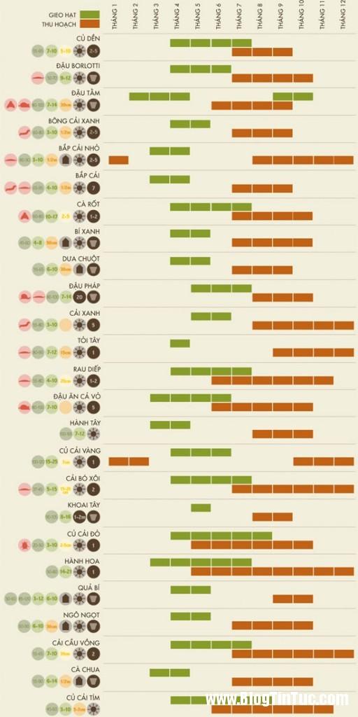 cam nang lam vuon3 512x1024 Cẩm nang làm vườn tại gia   Hướng dẫn tự trồng một khu vườn cá nhân