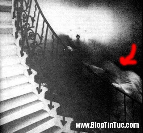 ghost picture Những câu chuyện rợn người của kẻ thường xuyên gặp ... ma