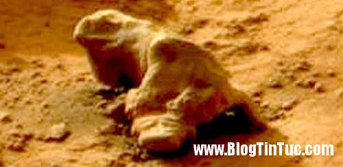 hinh anh tren sao hoa3 Những hình ảnh kỳ bí được chụp trên sao Hỏa