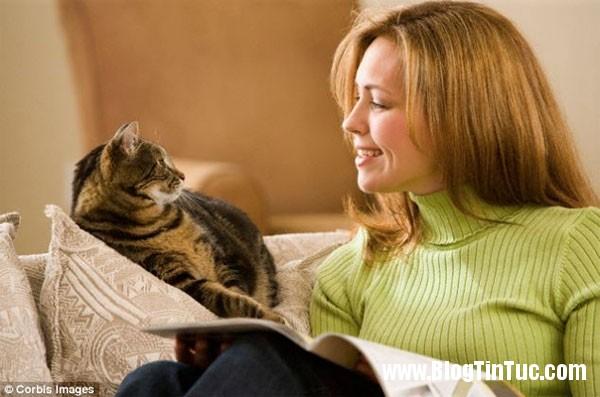 loai meo Những điều thú vị chưa ai biết về loài mèo