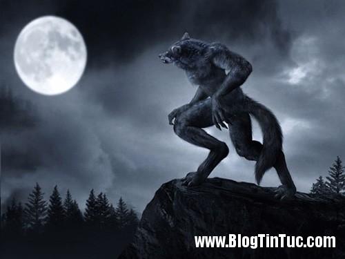 1351738826 bi an 1  Bí ẩn huyền thoại người sói đêm trăng tròn