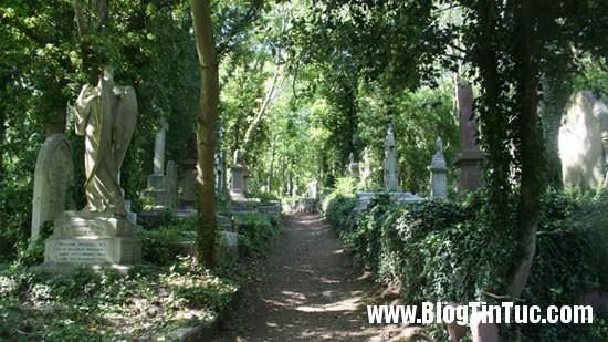 Highgate Bí ẩn ma cà rồng ở nghĩa trang Highgate cổ xưa