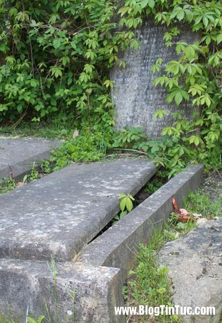 Highgate3 Bí ẩn ma cà rồng ở nghĩa trang Highgate cổ xưa
