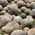 stoneball