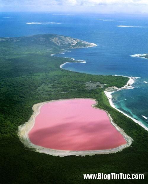 ho hillier1 Hồ nước toàn một màu hồng ở Australia