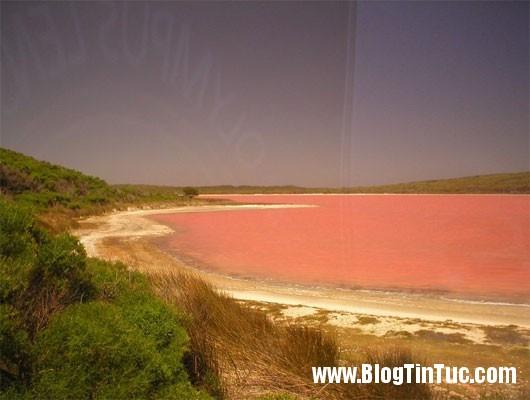ho hillier3 Hồ nước toàn một màu hồng ở Australia